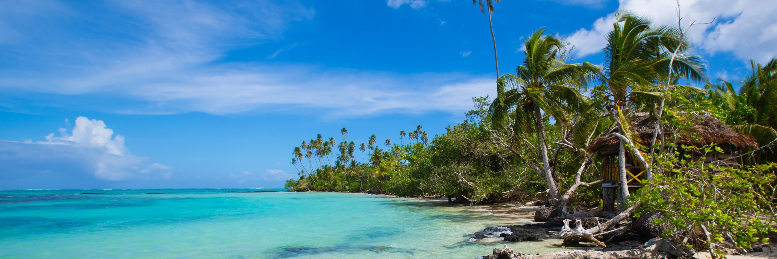 Samoa Part III – Gone Troppo