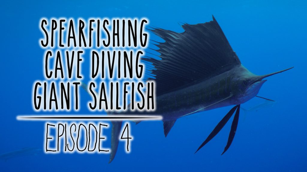Underwater Ally Adventures Episode 4: Spearfishing, Cave Diving & Freediving with Sailfish in 'Eua